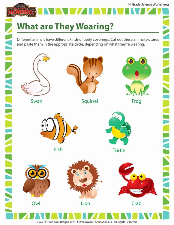 Science Worksheet for 1st Grade Beautiful What are they Wearing Worksheet 1st Grade Life Science