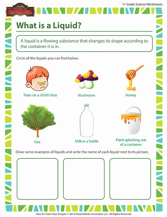 Science Worksheet for 1st Grade Elegant What is A Liquid View 1st Grade Science Printable sod
