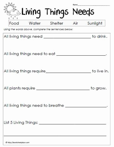 Science Worksheet for 1st Grade Inspirational Science Worksheets Living Vs Non Living