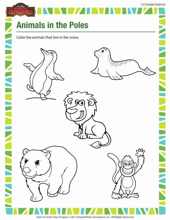 Science Worksheet for 1st Grade Luxury Animals In the Poles – Free 1st Grade Science Worksheet