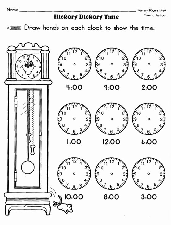 Science Worksheet for 1st Grade New 9 Best Images About Science On Pinterest