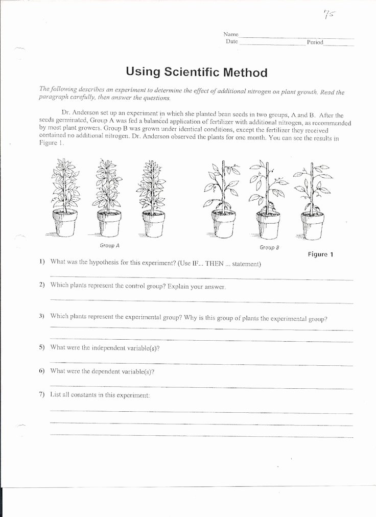 Scientific Method Examples Worksheet New Using Scientific Method Worksheet 1 163×1 600 Pixels