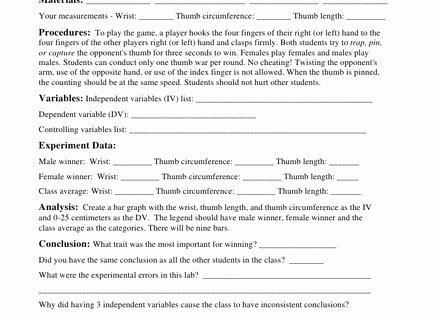 Scientific Method Review Worksheet Answers Beautiful 59 Scientific Method Review Worksheet Scientific Method