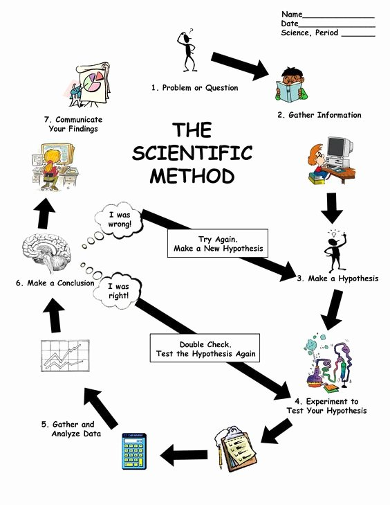 Scientific Method Steps Worksheet Lovely Scientific Method Worksheet