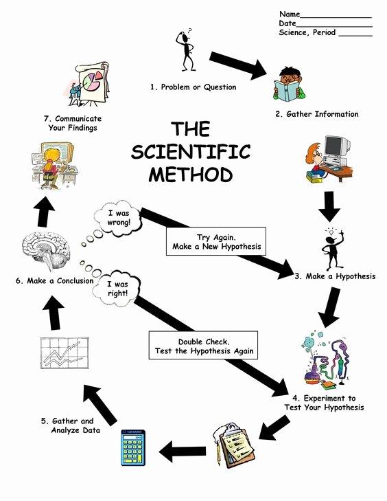 Scientific Method Steps Worksheet Lovely Scientific Method Worksheet