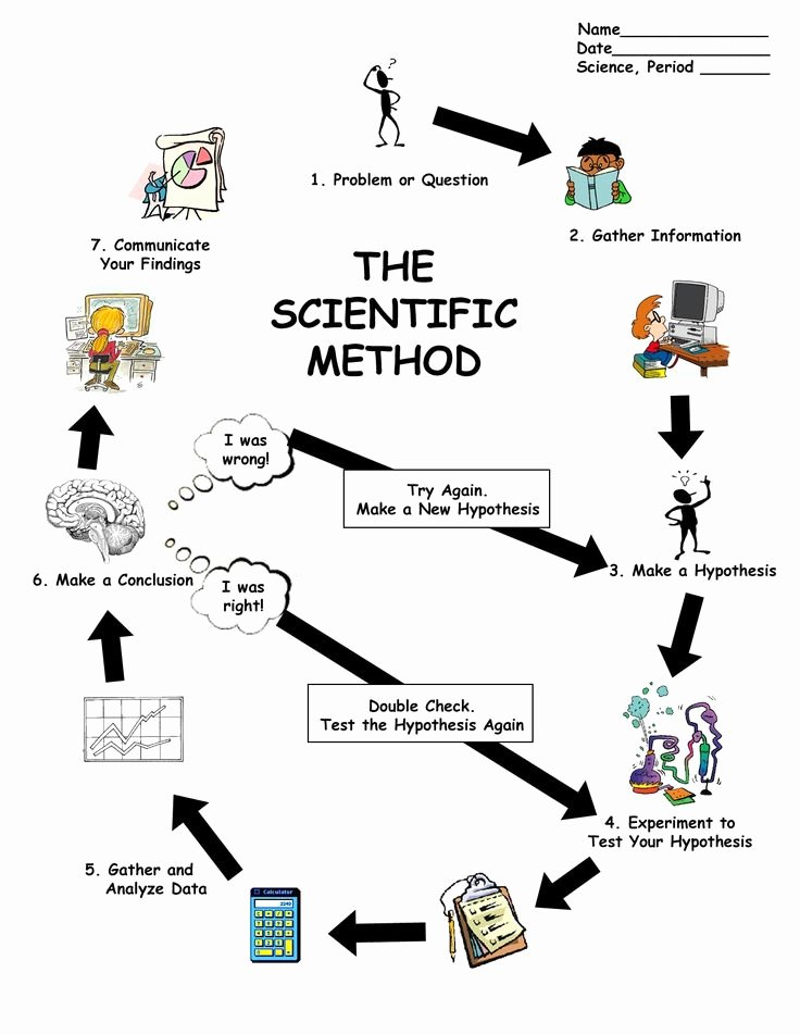 Scientific Method Steps Worksheet Unique 25 Best Ideas About Scientific Method Worksheet On