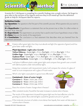 Scientific Method Worksheet 5th Grade Best Of Practice the Scientific Method