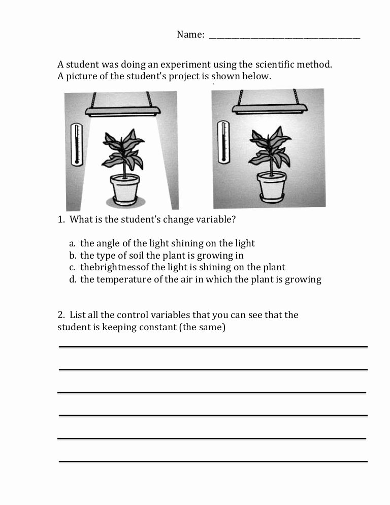 Scientific Method Worksheet 5th Grade Best Of Scientific Method Variables Worksheet