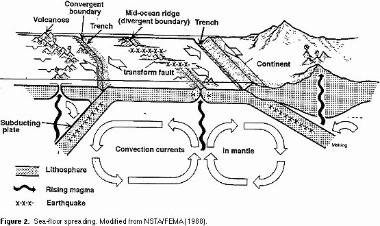 Sea Floor Spreading Worksheet Answer Fresh Seafloor Spreading
