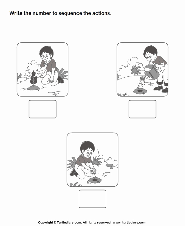 Sequence Of events Worksheet New Picture Sequencing Boy Planting A Tree Worksheet Turtle