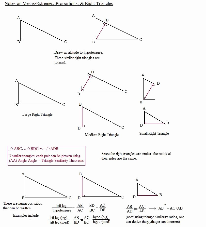 Similar Right Triangles Worksheet Elegant Triangle Similarity Worksheet