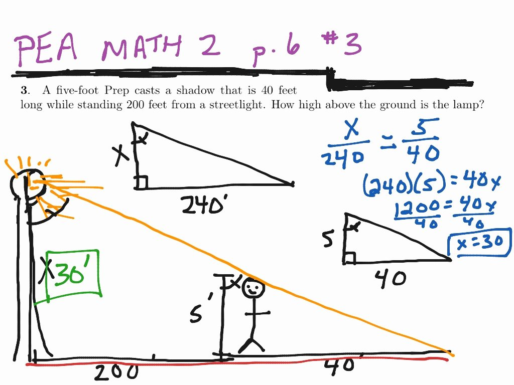 Similar Right Triangles Worksheet Luxury Worksheet Similar Figures Worksheets Grass Fedjp