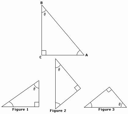 Similar Right Triangles Worksheet New Triangles Worksheet