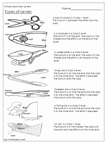 Simple Machines Worksheet Middle School Luxury Label and Identify the Levers Answers