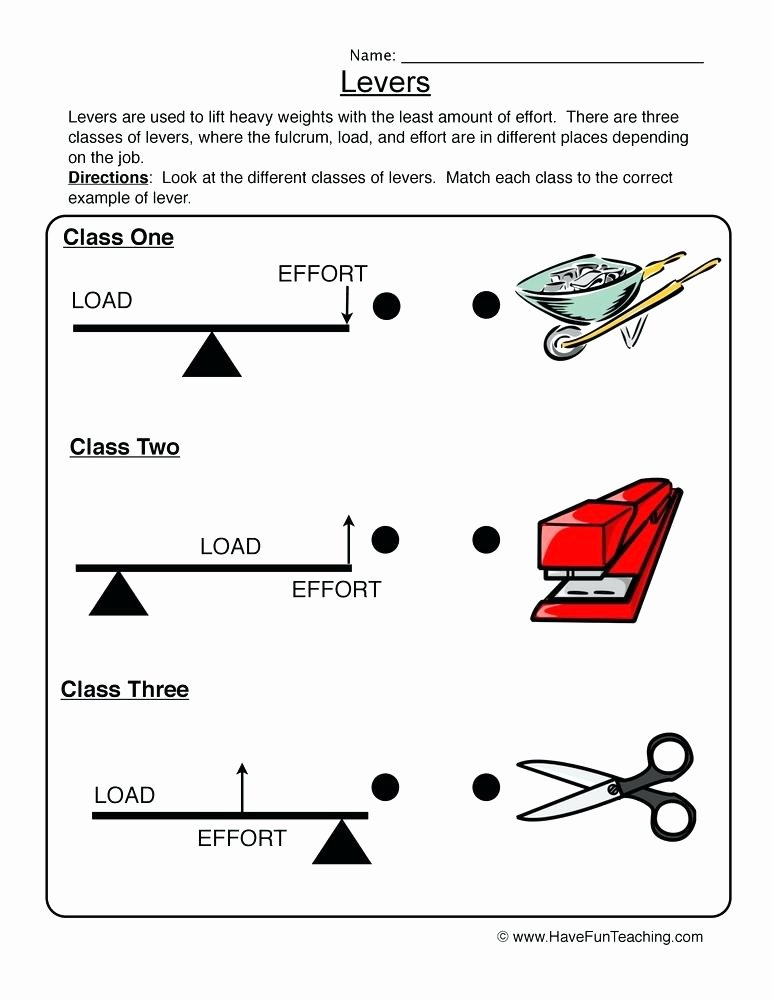 Simple Machines Worksheet Pdf Fresh Simple Machines Label and Identify the Levers Worksheets