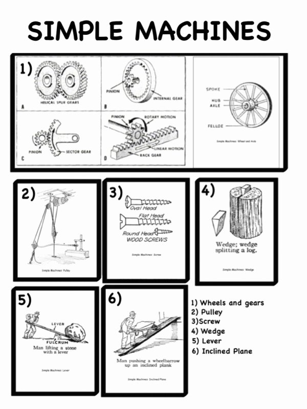 Simple Machines Worksheet Pdf Inspirational Simple Machines Printable Worksheets the Best Worksheets