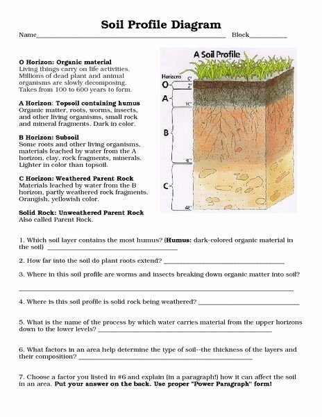 Soil formation Worksheet Answers Inspirational soil Profile Diagram 8th 10th Grade Worksheet Lesson Pla