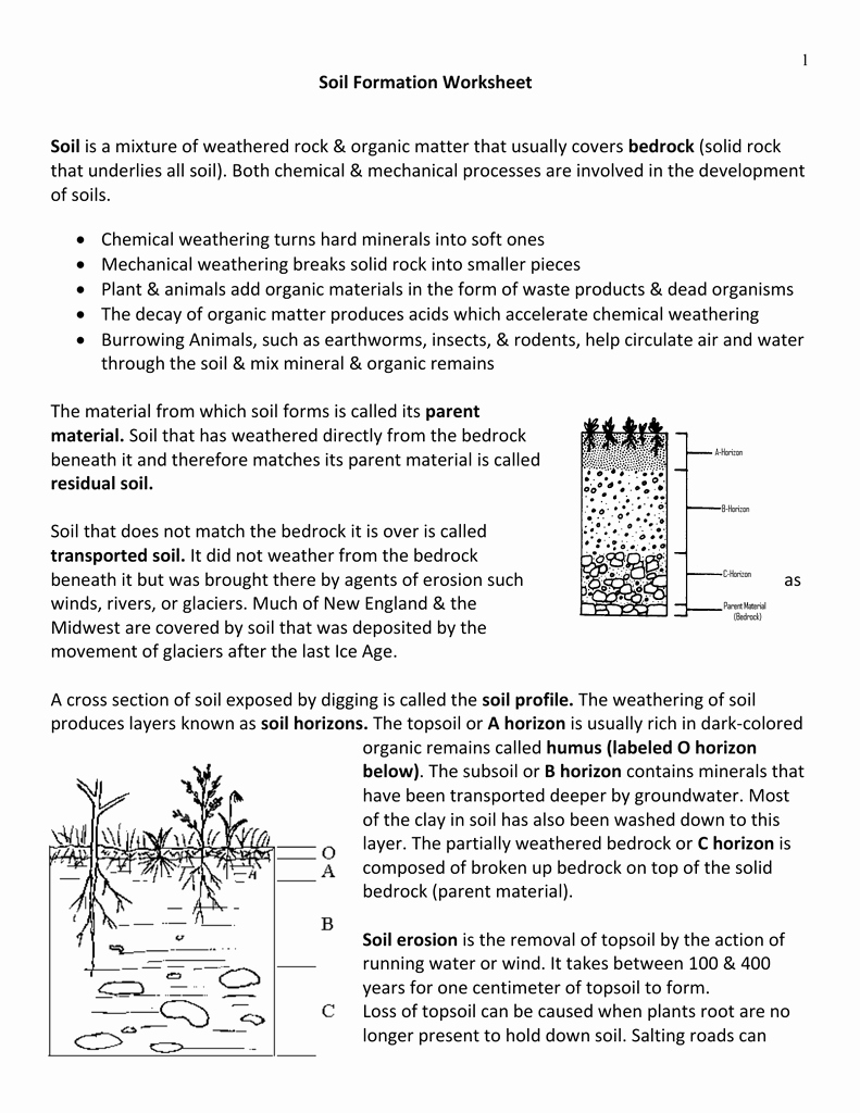 Soil formation Worksheet Answers Inspirational Weathering and soil formation Worksheet Answers