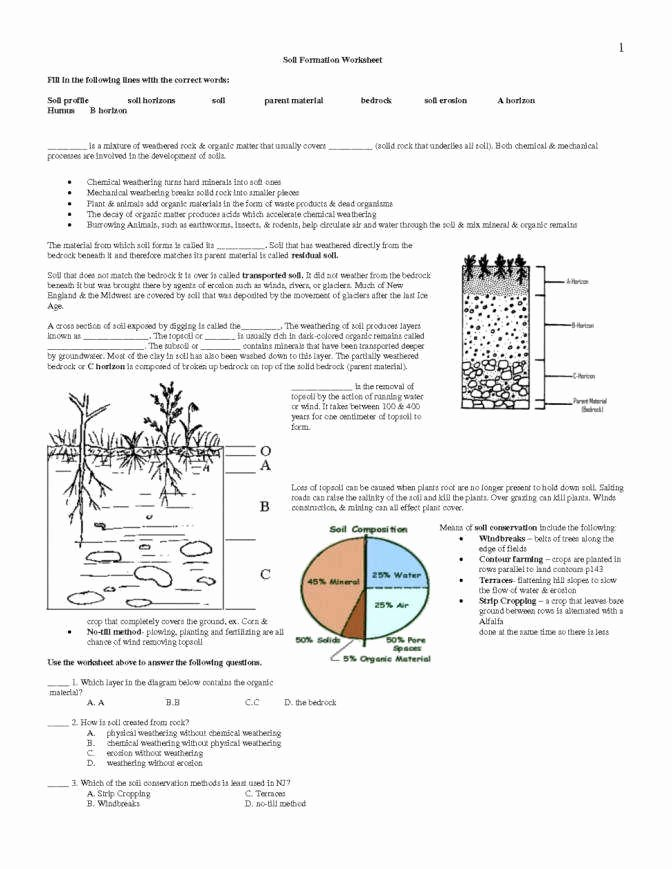 Soil formation Worksheet Answers Unique Weathering and Erosion Worksheets