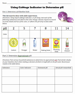 Solutions Acids and Bases Worksheet Luxury Free Of Student Worksheet for A Cabbage Ph