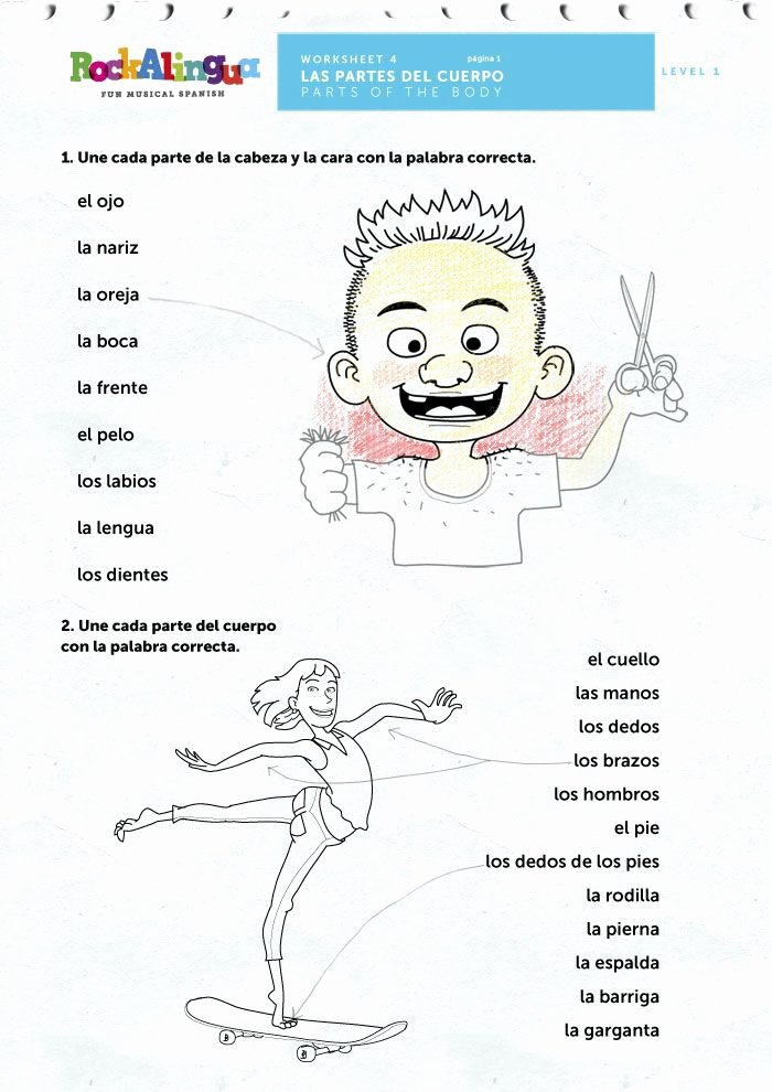 Spanish Body Parts Worksheet Beautiful Free Parts Of the Body Rockalingua