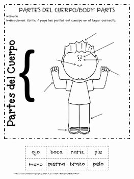 Spanish Body Parts Worksheet Luxury 1000 Images About Elementary Spanish On Pinterest
