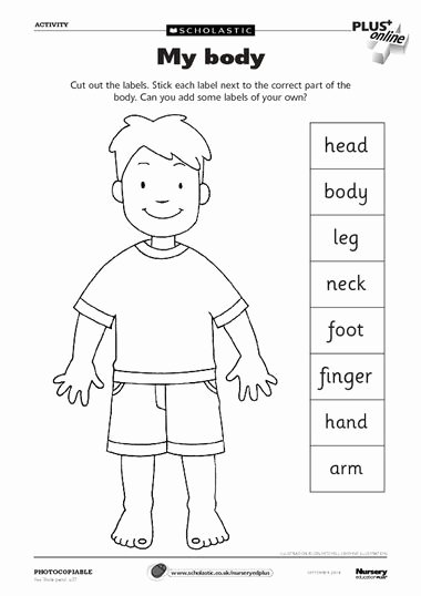 Spanish Body Parts Worksheet Luxury Body Parts Worksheet Can Use as A Dictionary to Label