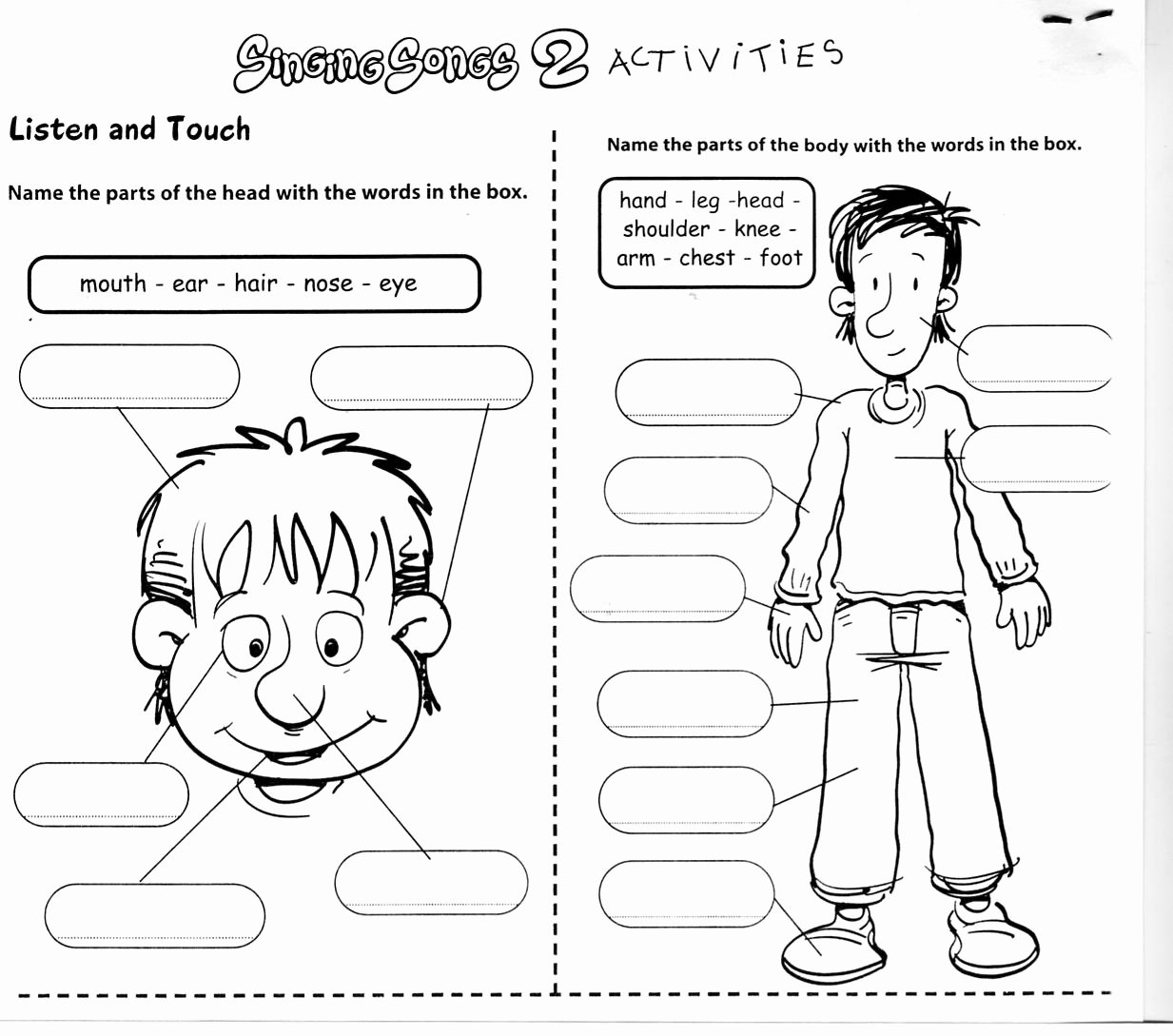 Spanish Body Parts Worksheet New Body Worksheets