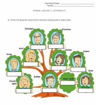 Spanish Family Tree Worksheet Best Of Family Spanish Vocabulary Practice by Spanish Edtech