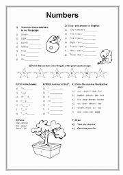 Spanish Numbers Worksheet 1 100 Unique 8 Best Of Spanish Numbers to 30 Worksheet Spanish