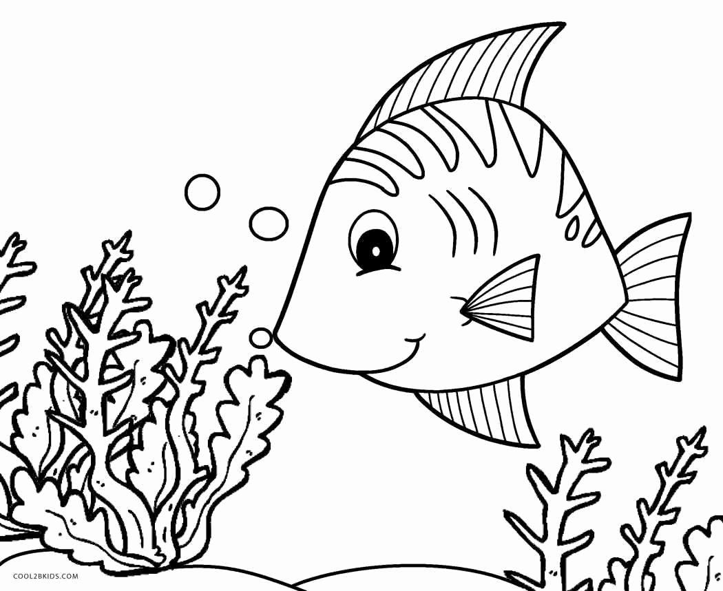 Sponges A Coloring Worksheet Fresh Sponge Animals Coloring Worksheet