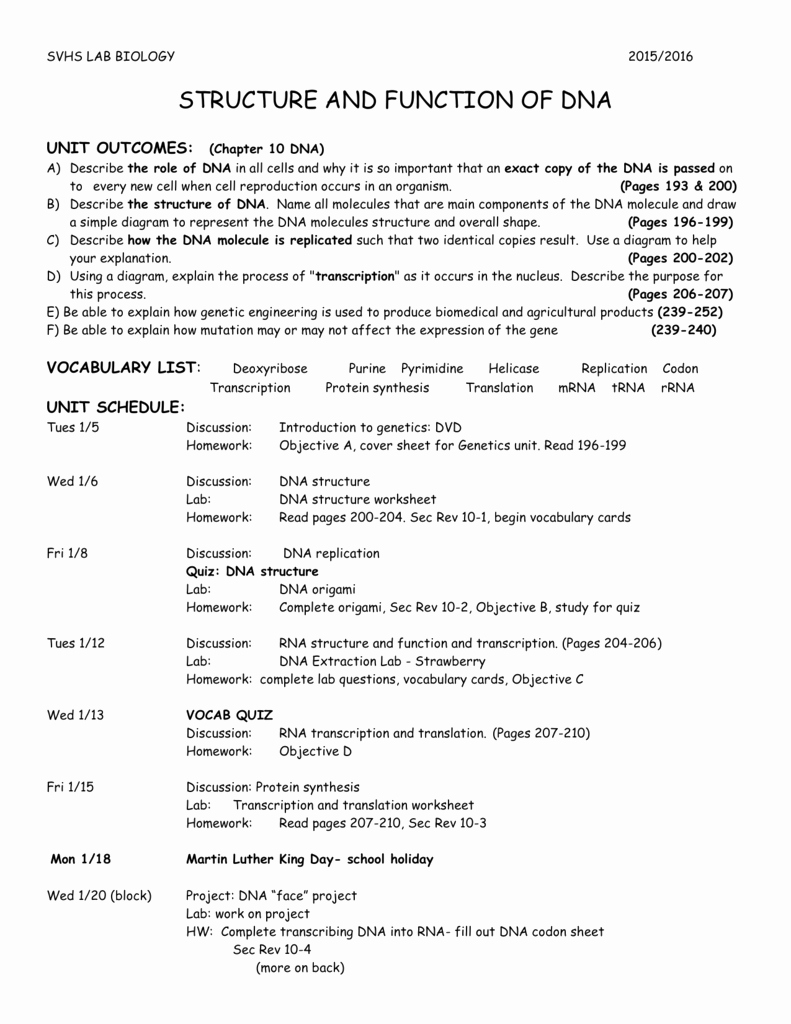 Strawberry Dna Extraction Lab Worksheet Best Of Strawberry Dna Extraction Lab Worksheet