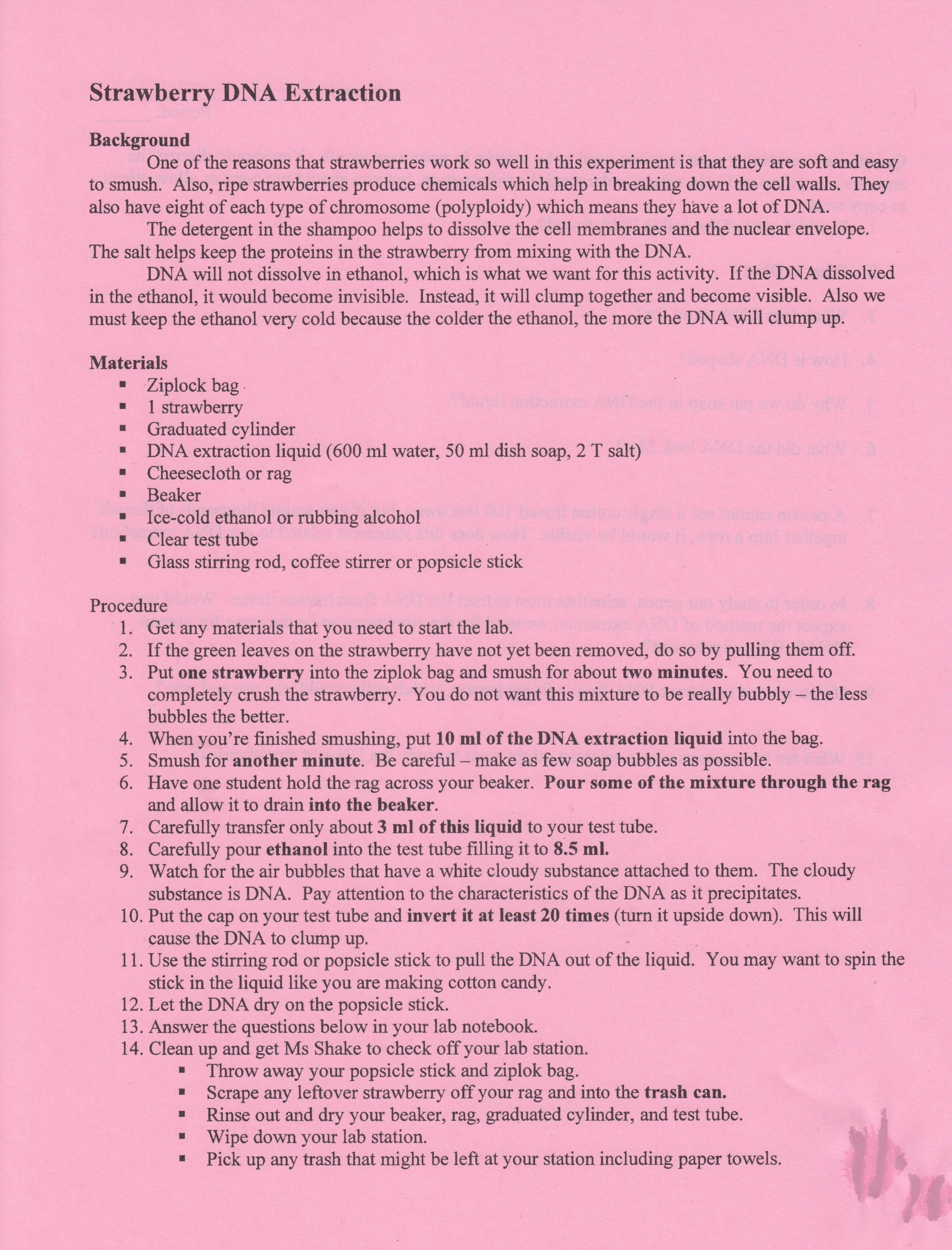 Strawberry Dna Extraction Lab Worksheet Elegant Ms Lesueur S Science Blog