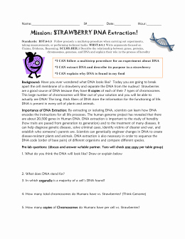 Strawberry Dna Extraction Lab Worksheet Elegant Strawberry Dna Extraction Lab