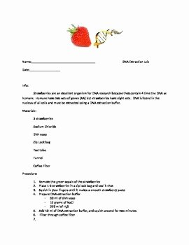 Strawberry Dna Extraction Lab Worksheet Lovely Dna Strawberry Extraction Lab by Adam Macauley