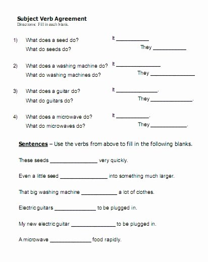 Subject Verb Agreement Worksheet Lovely Fill In the Blank