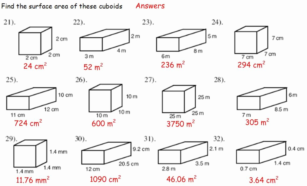 Surface area and Volume Worksheet Best Of Shape