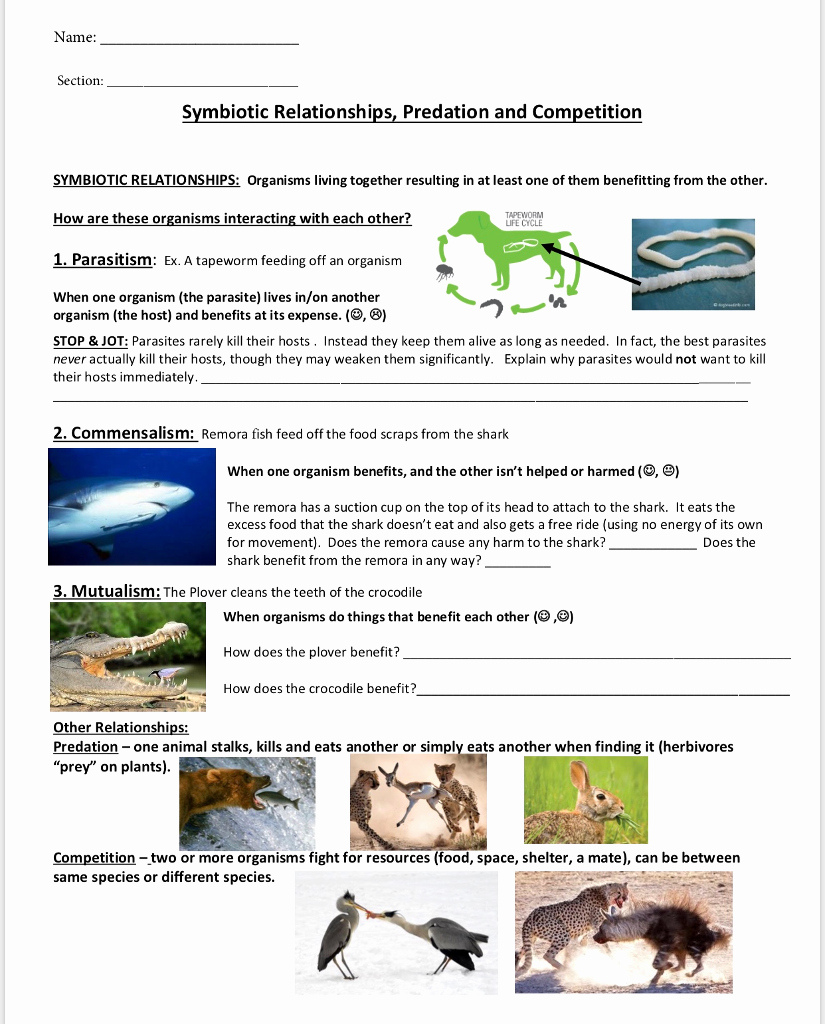 Symbiosis Worksheet Answer Key Inspirational solved Name Section Symbiotic Relationships Predation