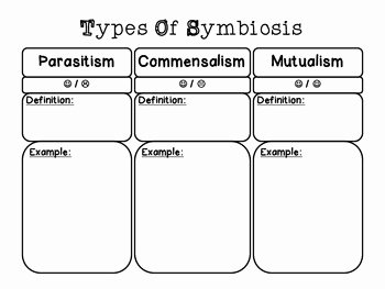 Symbiosis Worksheet Answer Key Luxury Symbiosis Chart by Msjackson