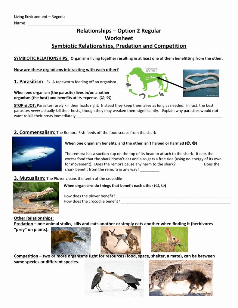 Symbiotic Relationships Worksheet Answers Beautiful Relationships Option 2 Worksheet Answers