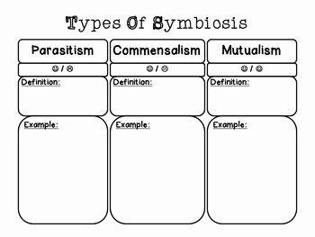 Symbiotic Relationships Worksheet Answers Elegant Symbiosis Chart by Msjackson