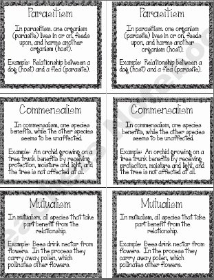 Symbiotic Relationships Worksheet Answers Fresh 25 Best Stem Symbiotic Relationships Images On Pinterest