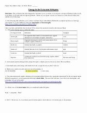Symbiotic Relationships Worksheet Answers Fresh Symbiosis Internet Worksheet 22 organism Interaction and