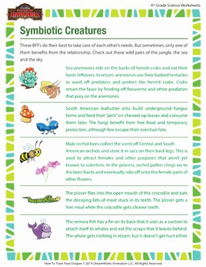 Symbiotic Relationships Worksheet Answers Inspirational Symbiotic Creatures – Biology Worksheet for 4th Grade – sod
