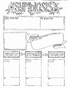 Symbiotic Relationships Worksheet Answers New Symbiosis Graphic organizer by Creativity Meets Cognition
