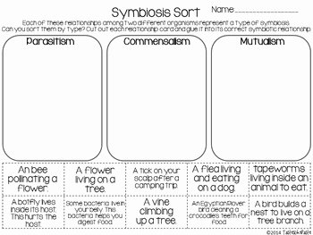 Symbiotic Relationships Worksheet Answers New Symbiosis sort and Prehension Page by Tasteslikepaste