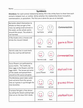 Symbiotic Relationships Worksheet Answers Unique Symbiotic Relationships Worksheet by Lafountaine Of