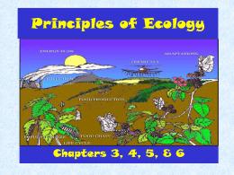 Symbiotic Relationships Worksheet Good Buddies Awesome Symbiotic Relationships Worksheet—good Bud S Barnacle