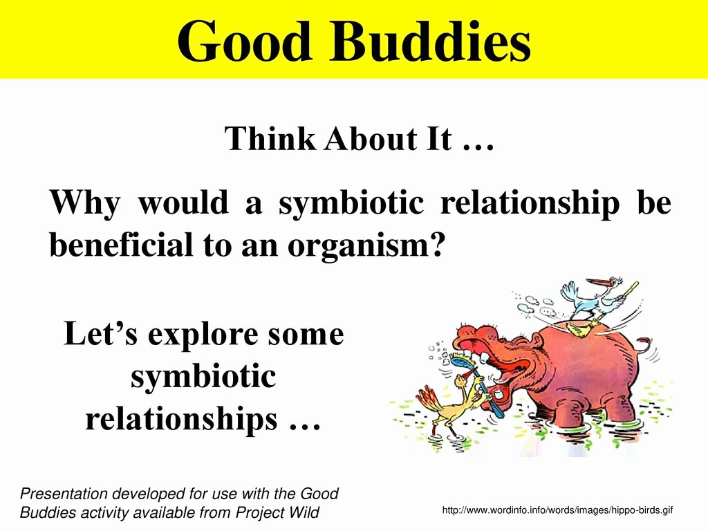 Symbiotic Relationships Worksheet Good Buddies Best Of Worksheet Types Symbiosis Worksheet Worksheet Fun
