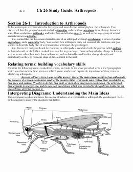 Symbiotic Relationships Worksheet Good Buddies Inspirational Studylib Essys Homework Help Flashcards Research